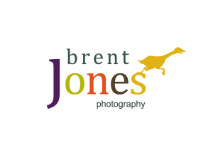 logo design option for Brent Jones